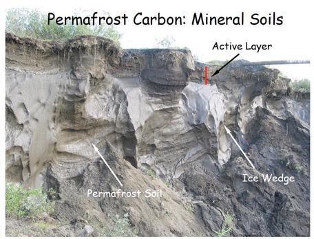 permafrost_ed_schuur_456 6